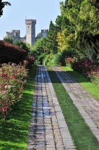 Valeggio_Parco Sigurtà-Viale delle rose