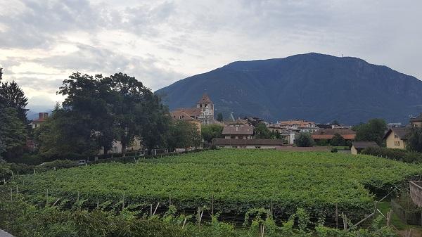 Bolzano vigneti gries