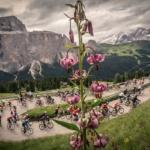 Maratona delle Dolomiti, l