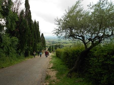 Assisi, sentiero per San Damiano