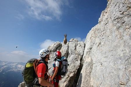 Dolomiti friulane sulle rocce