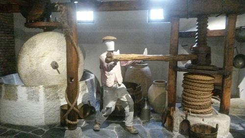 Imperia museo dell'olio carli
