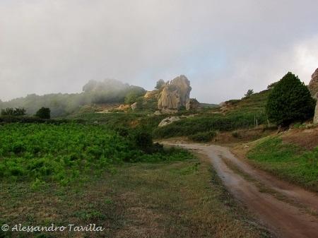 Megaliti Argimusco nel Bosco di Malabotta vicino Montalbano Elicona