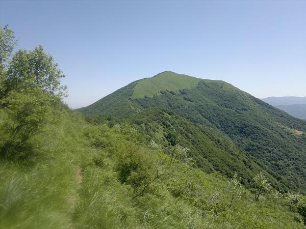 Monte Alfeo