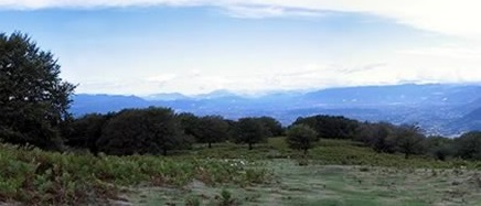 Terre del Taburno