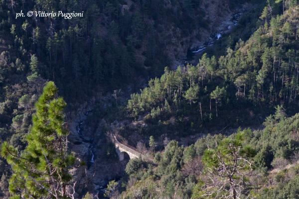 Ponte_Negrone_Parco_del_Beigua