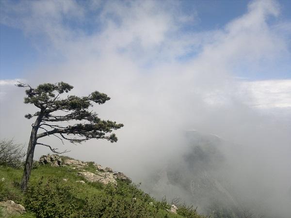 Sul Monte Rama nei Monti su Riviera di Ponente ligure