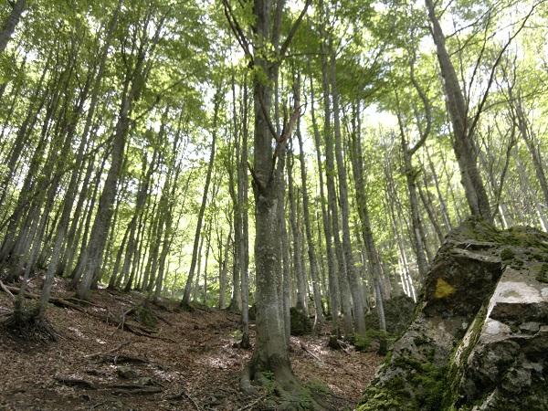 Escursione in Val d'Aveto